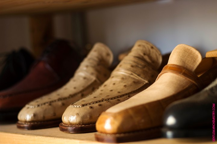 struzzo scarpe vivian saskia copie