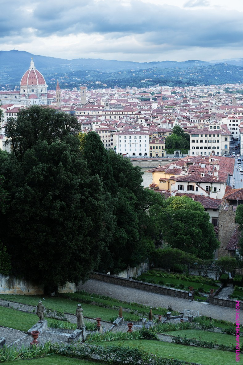 firenze vista alto copie
