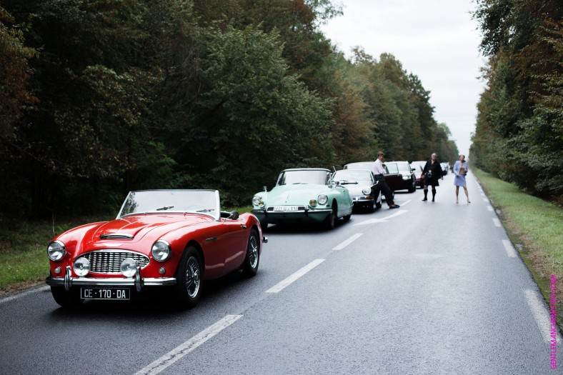 vintage-car-line-in-the-forest-copie