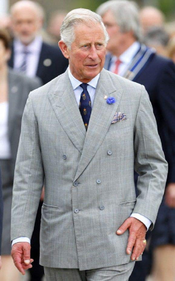 prince-charles-costume-croise-prince-de-galles